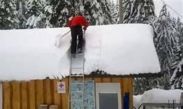 Panta optima pentru ingrijirea acoperisului